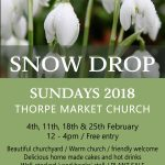 Snowdrop Sunday, 4th February at Thorpe Market Church, NR11 8UA